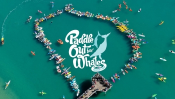 12 Aug 2017: Paddle out for Whales